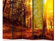 Paraván - Autumn Walk II [Room Dividers]
